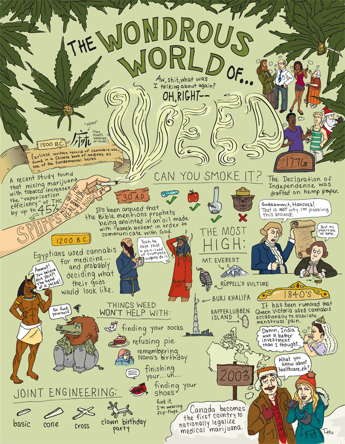 Tammi Heneveld - Theory Magazine- The Wondrous World of Weed